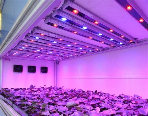 commonly used led lighting sources for grow lights led