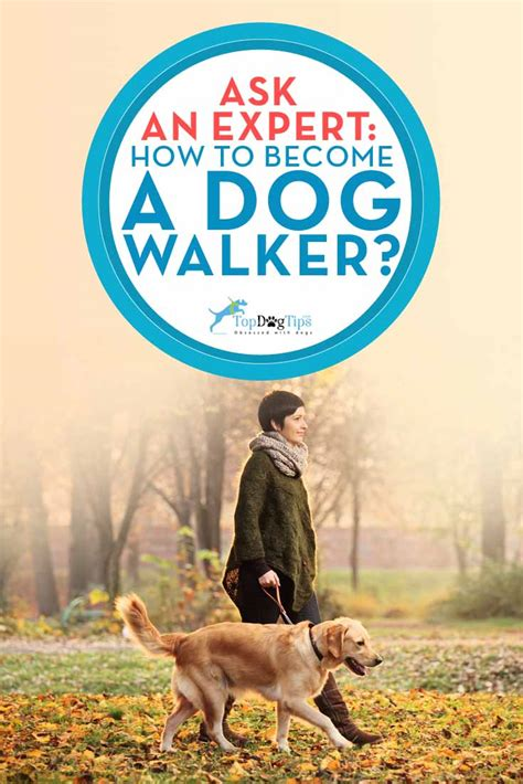 become a walker how to become a walker tips from a professional