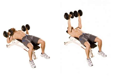 exercises with dumbbells and bench hugh jackman chest and triceps workout coach