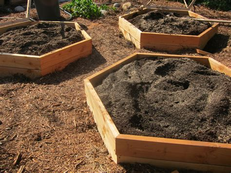 advantages  disadvantages  raised bed vegetable