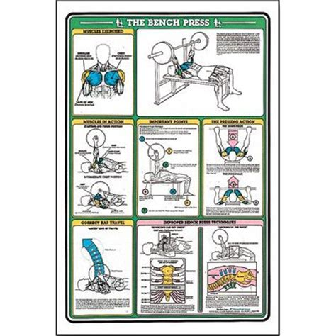 bench chart workout bench press dance workout pinterest bench press and benches