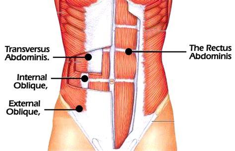 abdominal cutandjacked