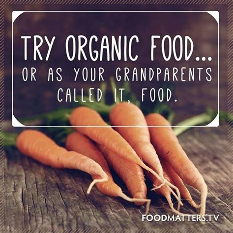 film quotes about food 1000 images about food matters quotes on pinterest food