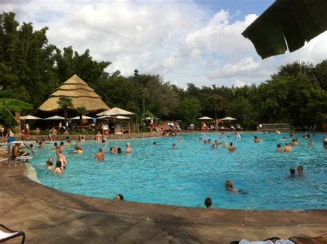 jambo house pool review disney s animal kingdom villas jambo house the walt disney world instruction