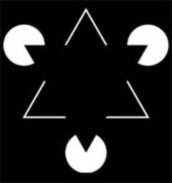 ilusiones opticas segun gestalt 13 ilusiones visuales que har 225 n que tu cabeza explote