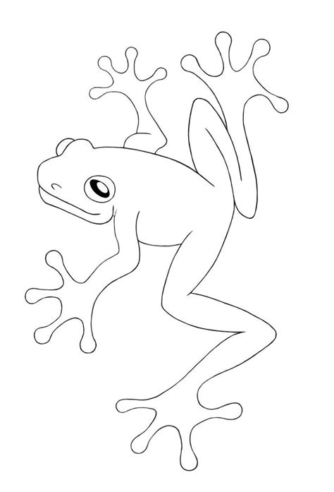 frog outline template free printable frog coloring pages for