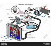 Automotive Cooling Image &amp Photo Free Trial  Bigstock