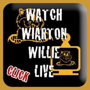 groundhog day countdown wiarton willie live countdown to gro