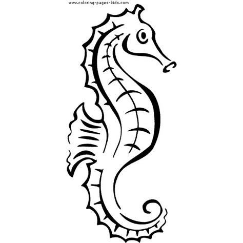seahorse coloring pages free seahorses coloring pages