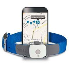 Tagg Pet Tracker Phone Number 1000 Images About Top Gifts For Iphone On