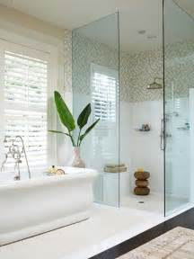 walk in shower small bathroom decorating ideas kitchentoday