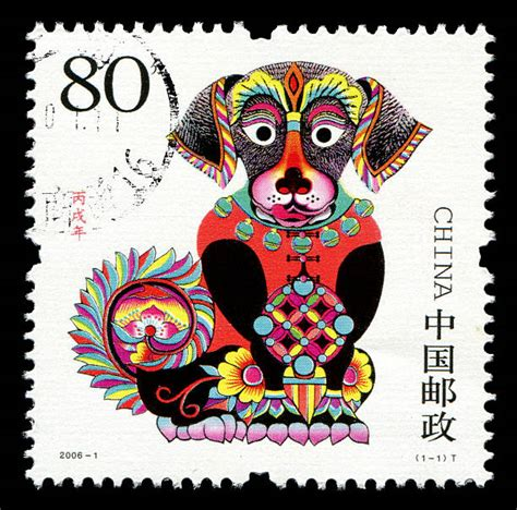 royalty free year of the dog pictures images and stock