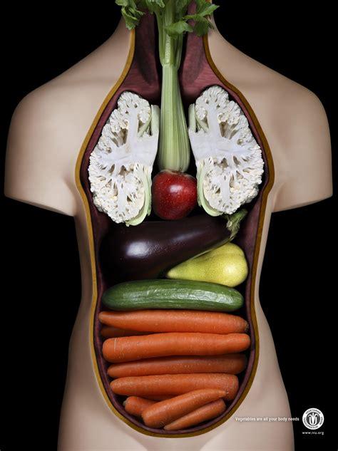 cos ã l alimentazione perdi peso e resta in forma con la dieta vegan ivegan