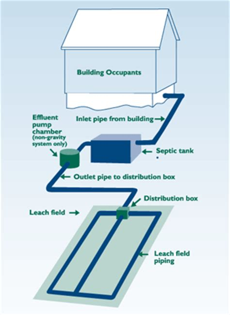 septic system diagram septic maintenance to earth construction