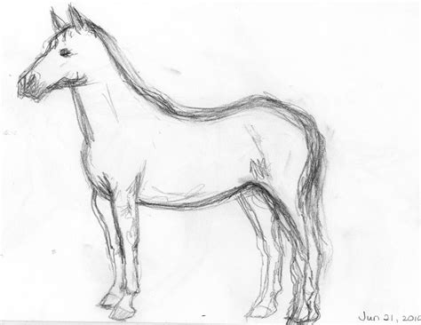 Sketches Horses by Frabjous Musings Sketch 1