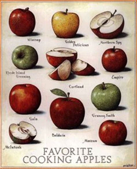best cooking apples american farming pinterest