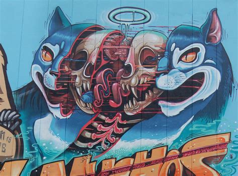 graffiti wallpaper bunnings fascinating murals show the funky anatomy of animals