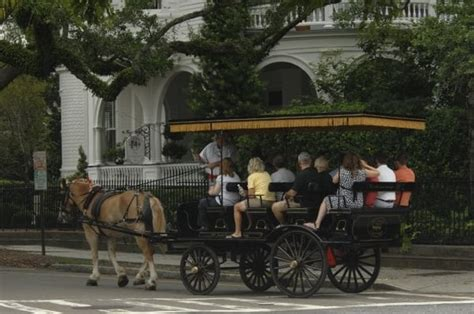 Charleston L Company by South Carriage Company Tours Charleston Sc