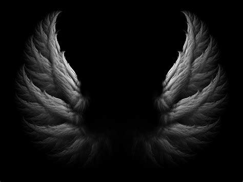 wings background white wings black background