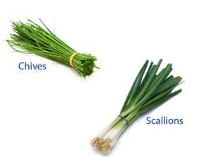 chives vs scallions thosefoods com