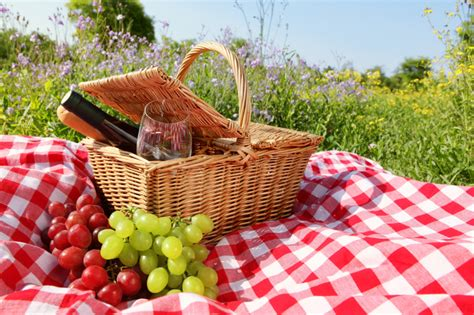 The Ideal Picnic Get It On The High Now by Picnic Packing Essentials Blain S Farm Fleet