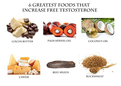 healthy fats to raise testosterone 6 greatest foods that increase free testosterone