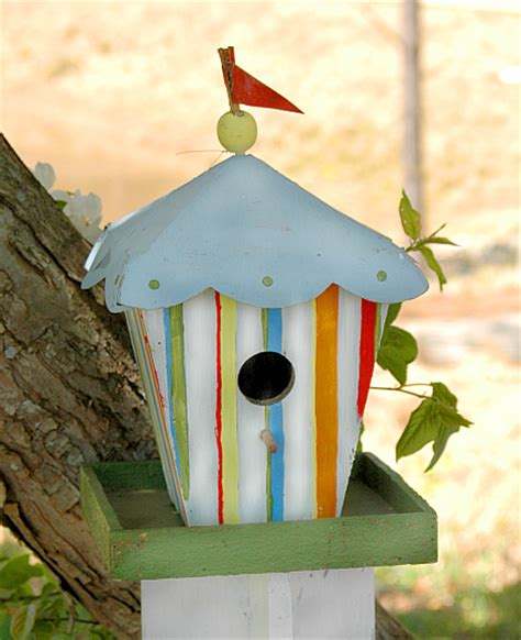 unique bird houses for sale whimsical bird houses novelty bird houses unusual and unique birdhouses at songbird