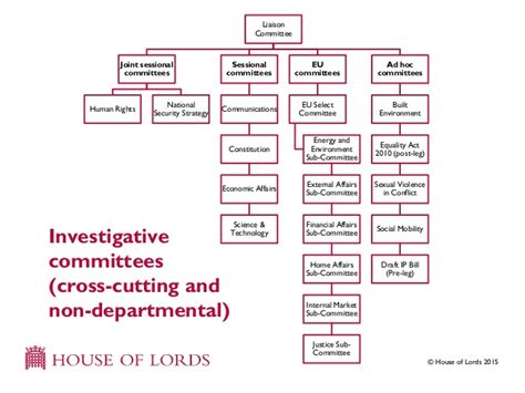 house select committee house of lords select committees