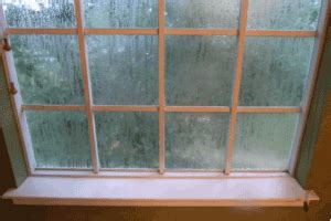 foggy house windows window replacement queens new windows westchester ny