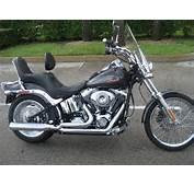 2008 Harley Davidson FXSTC  Softail Custom For Sale On