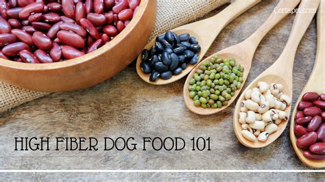 high fiber puppy food high fiber food 101 everything you need to certapet