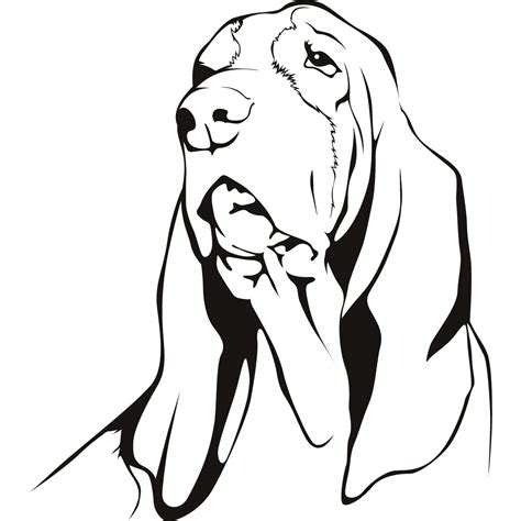 coloring pages of coon dogs coon dog pages coloring pages