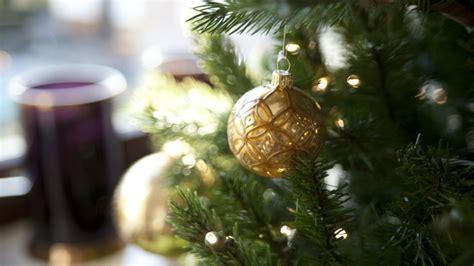 vasi natalizi vasi natalizi look natalizio per i tuoi fiori dalani e
