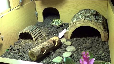 Not So Big House Plans My Hermann Tortoise Enclosure Youtube