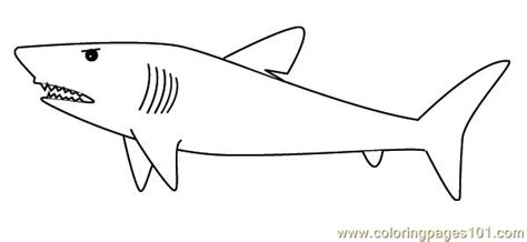 large shark coloring page huge shark coloring page free shark coloring pages