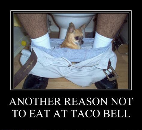 another reason another reason not to eat at taco bell burn a brain
