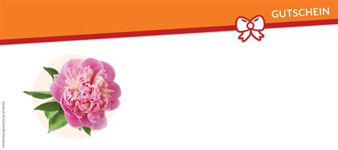 Vorlage Word Reisegutschein Bunte Blumen Gutschein Vorlagen Und Vordrucke Auf Gutscheine De