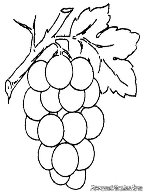printable mewarnai free coloring pages of gambar buah