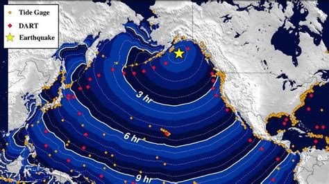 Phone Lookup Alaska Recap Tsunami Fears Ease After Us Quake