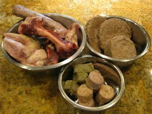 food diet for dogs food diet for dogs feeding dogs breeds picture