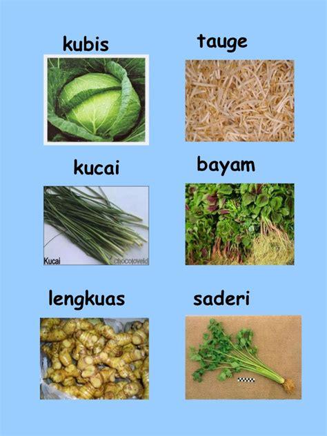 Hemat The Way To Win nama sayur sayuran gallery