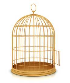 in a cage open bird cage png www pixshark images galleries with a bite