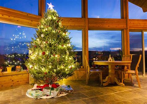 why do we put christmas trees in our house why we put up trees holidaysmart