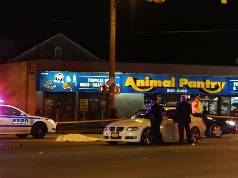 ozone park struck and killed on cross bay the forum