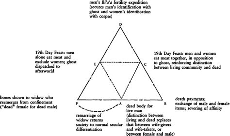 cassowary cycle diagram the of the pearl shell