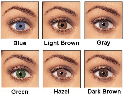 green with a hint of dark blue color palette ideas best hair color for blue light brown green and hazel
