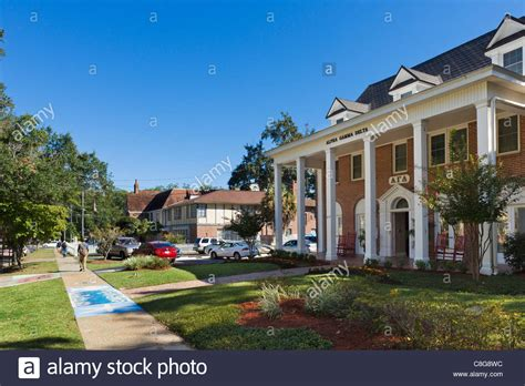 fsu frat houses alpha gamma delta women s fraternity house at florida state stock photo royalty free