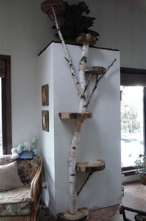 cat and tree the best cat tree evah and 5 also rans mousebreath