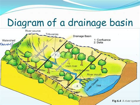 drainage basin system diagram drainage basins and flood hydrographs ppt