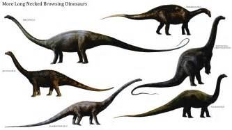 Long necked browsing dinosaurs 2 herbivore dinosaurs wallpaper image